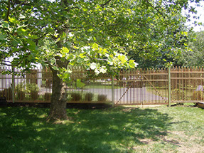 Custom Wood Fence